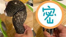 鱷魚,食材,哥吉拉,膠質,辦桌 圖/翻攝爆廢公社二館