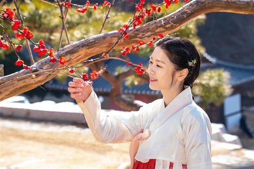 朝鮮花美男,孔明,庭沼珉,李俊昊 車庫娛樂提供