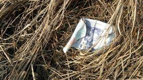 現金,紙鈔,千元,紅包,冥婚 圖/翻攝爆怨公社