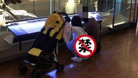 博物館看化石!地方媽媽一蹲下曬「整片肉色」(圖/翻攝自臉書加藤軍路邊隨手拍)