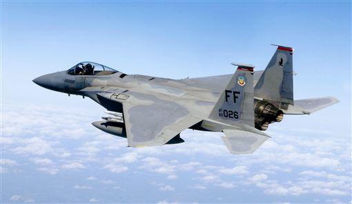 F-15,戰鬥機,美軍,空軍,昏迷a(圖/翻攝自維基百科)