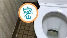廁所,蟒蛇,角落,打工(翻攝自Dcard)