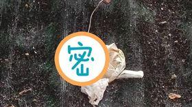 小雨衣,保險套,子孫滿堂,屋頂(翻攝自爆怨公社)