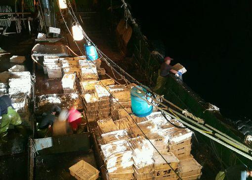 陸船越界捕魚 船上漁獲近800公斤澎湖海巡隊在花嶼西海域查扣「閩獅漁06736號」,漁船甲板上捕獲滿滿的漁獲,初估有近800公斤,人船押返偵辦。(澎湖海巡隊提供)中央社 109年1月7日