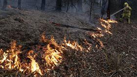 ▲1月20日開打的澳網不會因為澳洲野火延期。(圖/美聯社/達志影像)