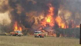 澳洲野火肆虐,席捲熱門旅遊區,切斷多個城鎮的交通,數千名度假者和當地人必須夜宿海灘。圖為澳洲新南威爾斯中部海岸地區郊區Charmhaven附近大火情形。(圖取自twitter.com/NSWRFS)