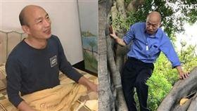 韓國瑜睡覺爬樹