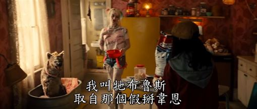 ▲(圖/華納提供)《猛禽小隊:小丑女大解放》