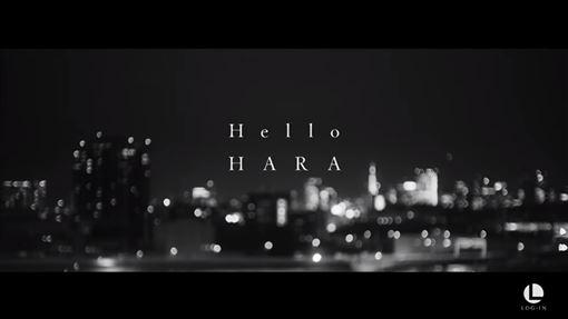 具荷拉 Hello 圖/YT