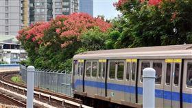 台北捷運董事會13日通過取消北捷8折優惠票。(中央社檔案照片)