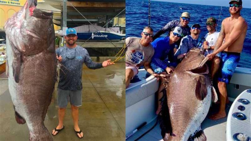 釣竿捕獲158公斤「巨型石斑」 震撼專家:已高齡50歲