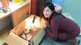 直播雞蛋去哪裡?韓國瑜的雞在這裡 何庭歡PO照片跪了(圖/翻攝自何庭歡臉書)