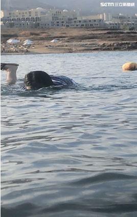 約旦 死海 旅遊 投訴