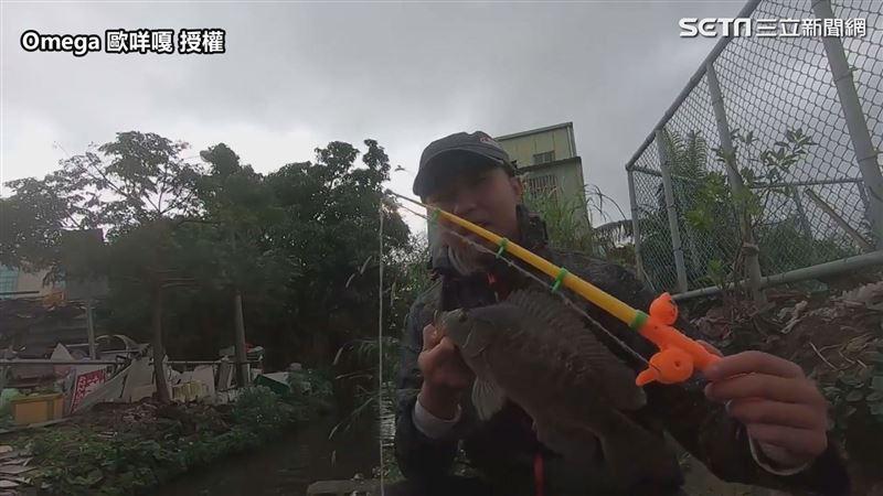 用玩具釣竿水溝邊實釣 意外釣出特大
