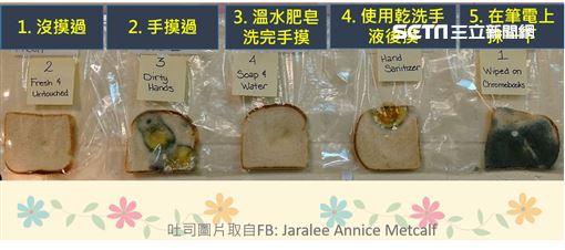 ▲(圖/翻攝自Jaralee Annice Metcalf) 細菌 洗手