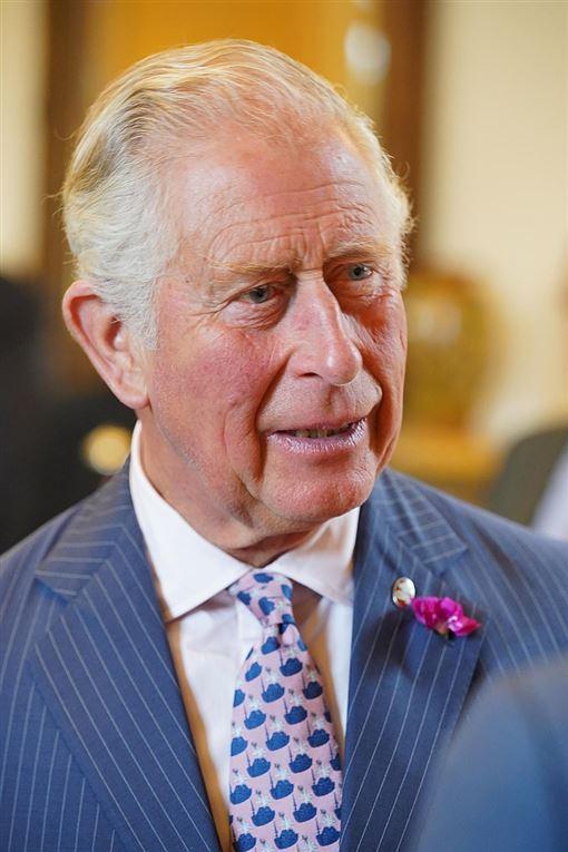 威爾斯親王查爾斯 哈利王子 維基百科