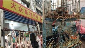 大眾畜牧野味,武漢肺炎,華南海鮮市場/翻攝微博