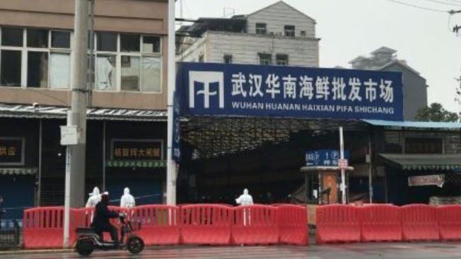 不只華南海鮮市場 英國醫學期刊:武漢肺炎恐有多個疫源地