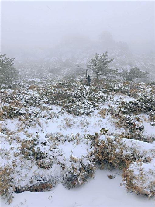 南橫嘉明湖積雪深及腰又颳強風 嚮導:像暴風雪趴著才能走嘉明湖天馬登山社提供