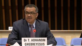 世界衛生組織(WHO)秘書長譚德塞(Tedros Adhanom)(截圖自WHO直播)