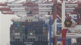 財政部7日公布1月出口250.7億美元,比2019年同月衰退7.6%,終止「連二紅」。