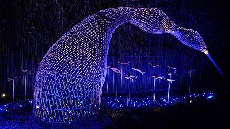 花東海岸原住民日常 台灣燈會看得到