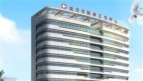 武漢市心理醫院(圖/翻攝自武漢市心理醫院官網)