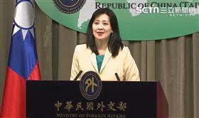外交部發言人歐江安(圖/翻攝畫面)