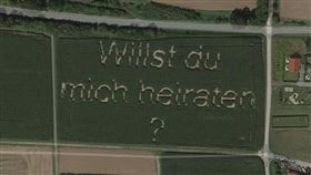 玉米田,求婚,谷哥,地圖,德國(翻攝自Google衛星圖)