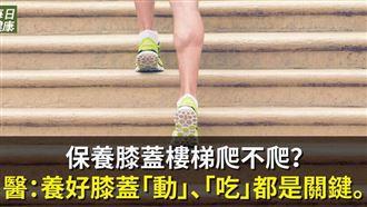 爬山是傷膝蓋還是保養膝蓋?