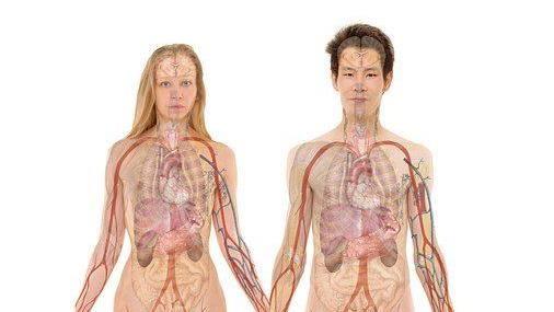 抗新冠肺炎必懂這三個字 吳明珠中醫師教你這樣聰明強身
