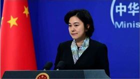 中國外交部發言人華春瑩。(圖/資料照)