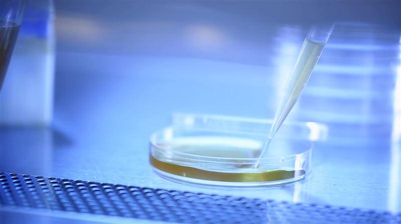 大漢酵素首創抗病毒醱酵晶體專利 降低病毒感染率