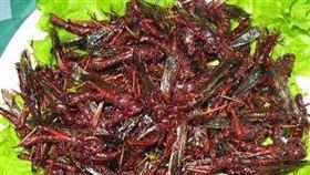 蝗蟲來襲免驚!以色列教你做環保料理