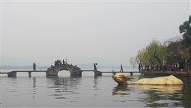 大陸,杭州,西湖(圖/翻攝自@punyuko17推特)