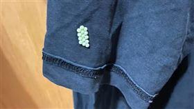 荔枝椿象,南投,老公,衣服,蟲卵(圖/翻攝自爆怨公社