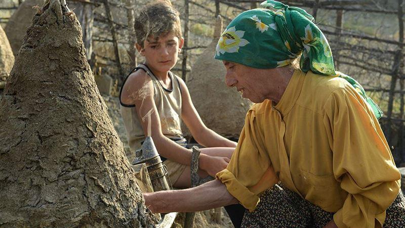 歷時三年拍攝歐洲最後一位女性養蜂人
