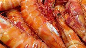 蝦子(示意圖/翻攝自pixabay)