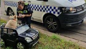 ▲澳洲警方對一隻坐在賓士車的狗進行口頭警告。(圖/翻攝自Victoria Police FB)