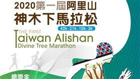 ▲2020第一屆阿里山神木下馬拉松延期至109年11月22日開跑(圖/觀光局提供)
