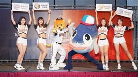 ▲統一獅隊和台南市政府合作推出4大活動。(圖/統一獅隊提供)
