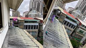 屋簷,鴿糞,窗外,心臟,高空(翻攝自 爆怨公社)