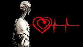 心臟(Pixabay)