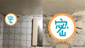 喇牙,蟑螂,手掌,浴室(翻攝自 爆怨公社)