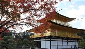 日本京都受到武漢肺炎疫情影響,觀光客銳減。圖為京都金閣寺。(中央社檔案照片)