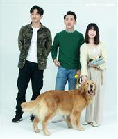 LINE TV「黑喵知情」演員王家梁、連俞涵、施名帥、寵物明星黃金獵犬小小。(記者邱榮吉/攝影)