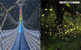 南投推國旅行程!30樓高「七彩吊橋」 搭超浪漫螢火蟲季(圖/資料照)