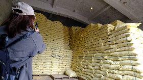 農委會:公糧儲備充足