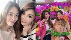 楊麗菁 劉真 圖/臉書