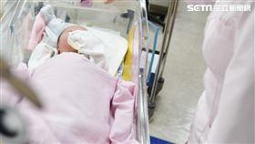 出生率,嬰兒。(圖/記者陳韋帆攝影)